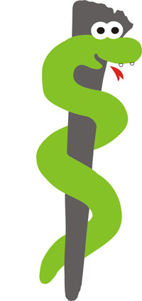 Logo Pleyer